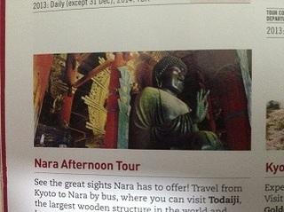 travel Japan (7).jpg