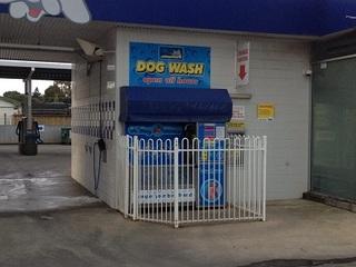 Dog wash (6).JPG