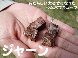 チャコ ラムキューブ (6).png