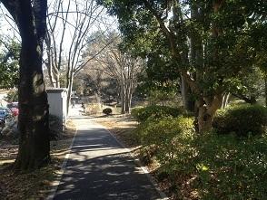 写真 2013-01-27 11 31 11.jpg