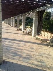 植物公園 (6).jpg