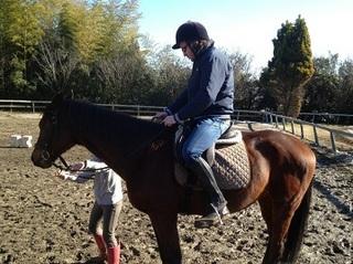Horse riding (5).JPG