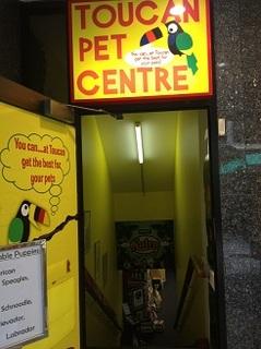 Pet shop au (2).JPG