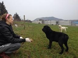 korea farm (2).JPG